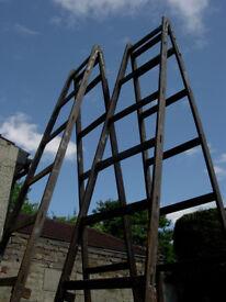 builders trestles 12 foot/3.65meters. lightweight & strong.