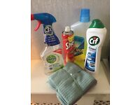 Domestic cleaner in your own home . Call for prices ,reliable service .