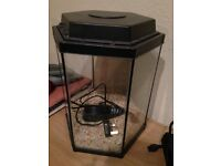 23 litre glass aquarium with elite stingray 10 pump/filter