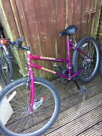 Used 26 inch wheel bike