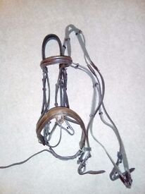 Full English leather brown bridle, with 3-point breastplate