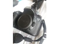 Canon 7d plus lens coverter and bag