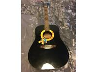 Guitar (Acoustic) (Used once)