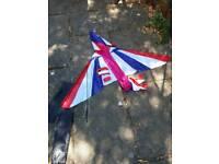 Kite in carry bag