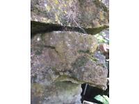 Rockery / Dry stone walling