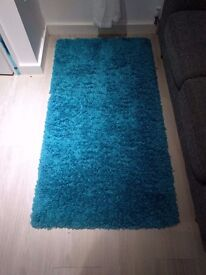 Teal/Turquise Rug in Mint Condition