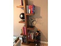 Modern walnut wood bookcase