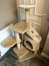 Cat tree / tower / scratching posts