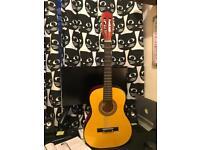 Acoustic Guitar 5
