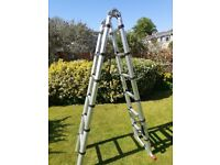 Telescopic Ladder - 2.8M