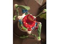 Baby's Fisher Price Rainforest Jumparoo Bouncer