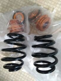 BMW e36 lowering springs, rear adjustable