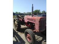 International tractor for sale