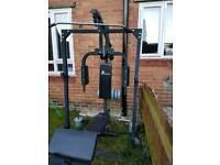 Freeweight multi gym