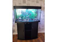 Juwel 180 Vision Fish Tank And Cabinet