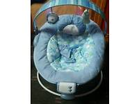 Boys baby bouncer