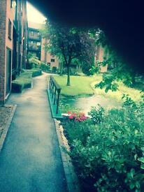 Full Furnished Studio flat in Lenton Nottingham