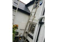 12ft single ladder, extra wide 19""