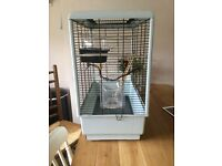 Bird cage available for small bird varieties