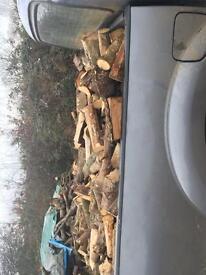 Seasoned firewood/logs