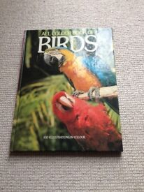 All Colour Book of Birds - Hardback (Cathay Books)