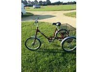 """""""BRAND NEW"""" Pashley Picador Hand Made Tricycle"""