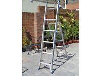 3 Way Step / Stair Ladder