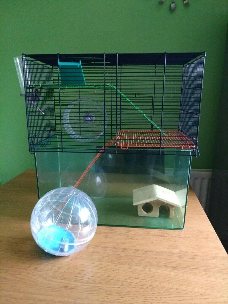 hamster small pet cage accessories
