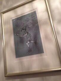 Alice , Craig Davison limited addition framed pics