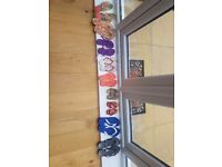 **9 paid of brand new havaianas**