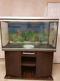 Rena 400 Aquarium