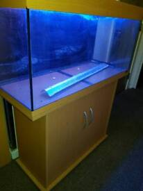 Jewel Fish Tank 3.5 ft approx Inc uv filter