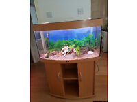 JUWEL VISION BOW FRONTED 180 LITER FISH TANK AND STAND FOR SALE