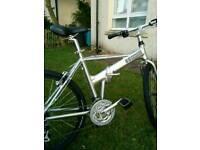 Dahon hybrid folding bike.