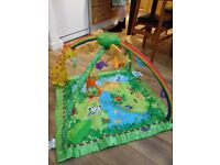 Fisher price jungle baby playmat