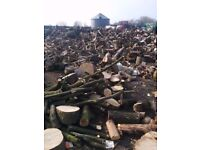 Fill Your Car With Uncut Logs / Firewood. Dry / Dried, Seasoned Woodburner Fuel