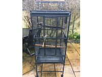 Rainforest play top parrot cage