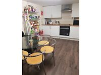 Beautiful Room - LISBURN ROAD - Very popular area, excellent city centre access!!