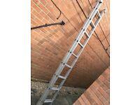 2 x 9 rung ladder
