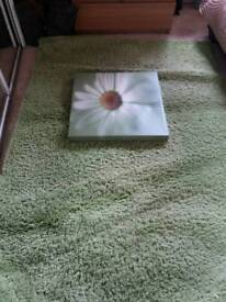 Brand new large green rug and matching green canvas