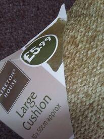 large Green cushion 50 x50