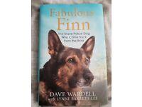 Fabulous Finn book