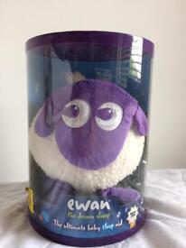 Ewan sheep