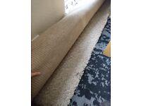 Large rug, high pile