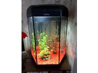 Aquael Hex-a-set 60 litre tank