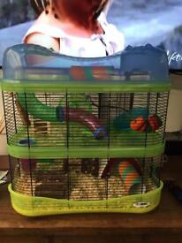 Male hamster 10 weeks old and imac fantasy cage (cost £80) plus all accessories