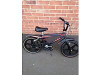 Raleigh street wolf rare now 1980s