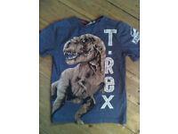Dinosaur T-Rex T shirt for age 7 to 8 Jurassic World Little Rebel