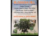 Blossom hill gardening services