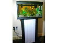 54 litre tropical fish tank with stand.